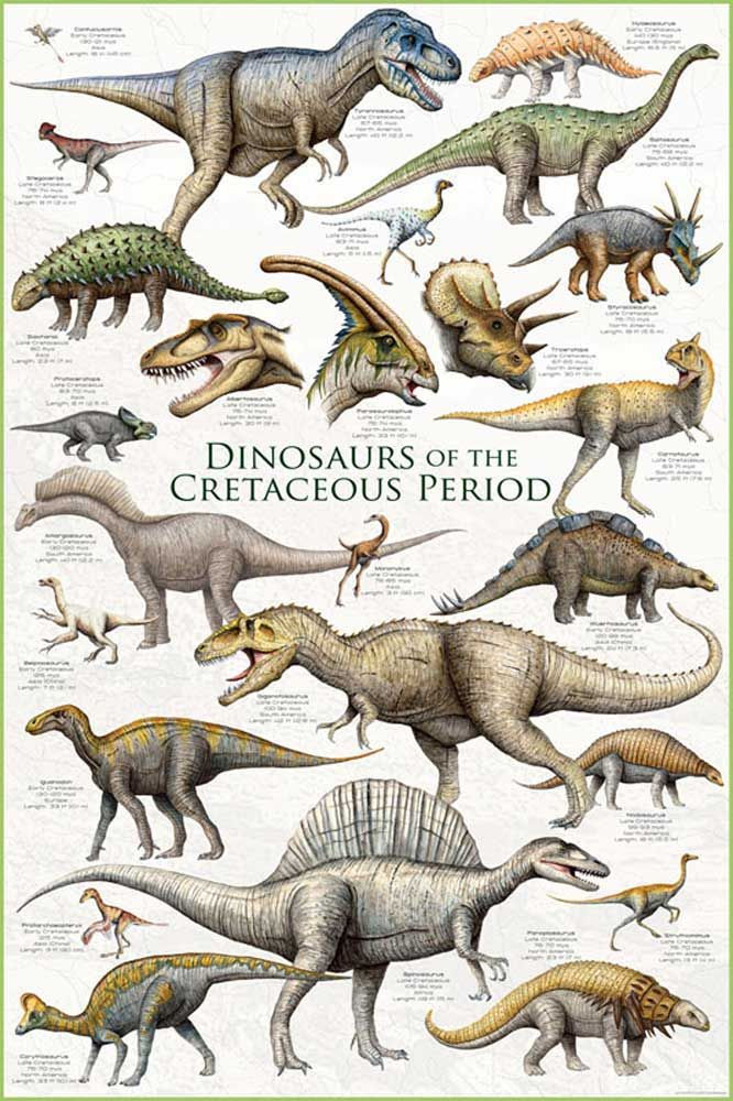 Educational Dinosaurs Cretaceous Period Dinosaurier - Poster Druck 61x91,5 cm #dinosaur