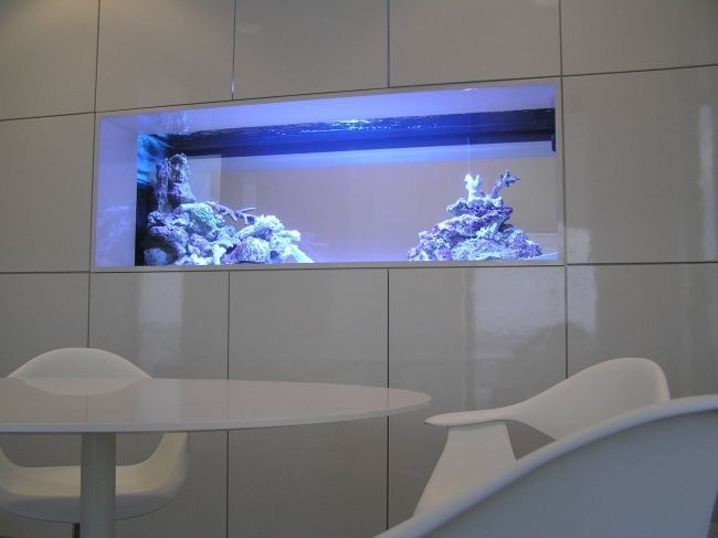esszimmerm bel wei hochglanz blaue beleuchtung eingebaut aquarien pinterest aquarium. Black Bedroom Furniture Sets. Home Design Ideas