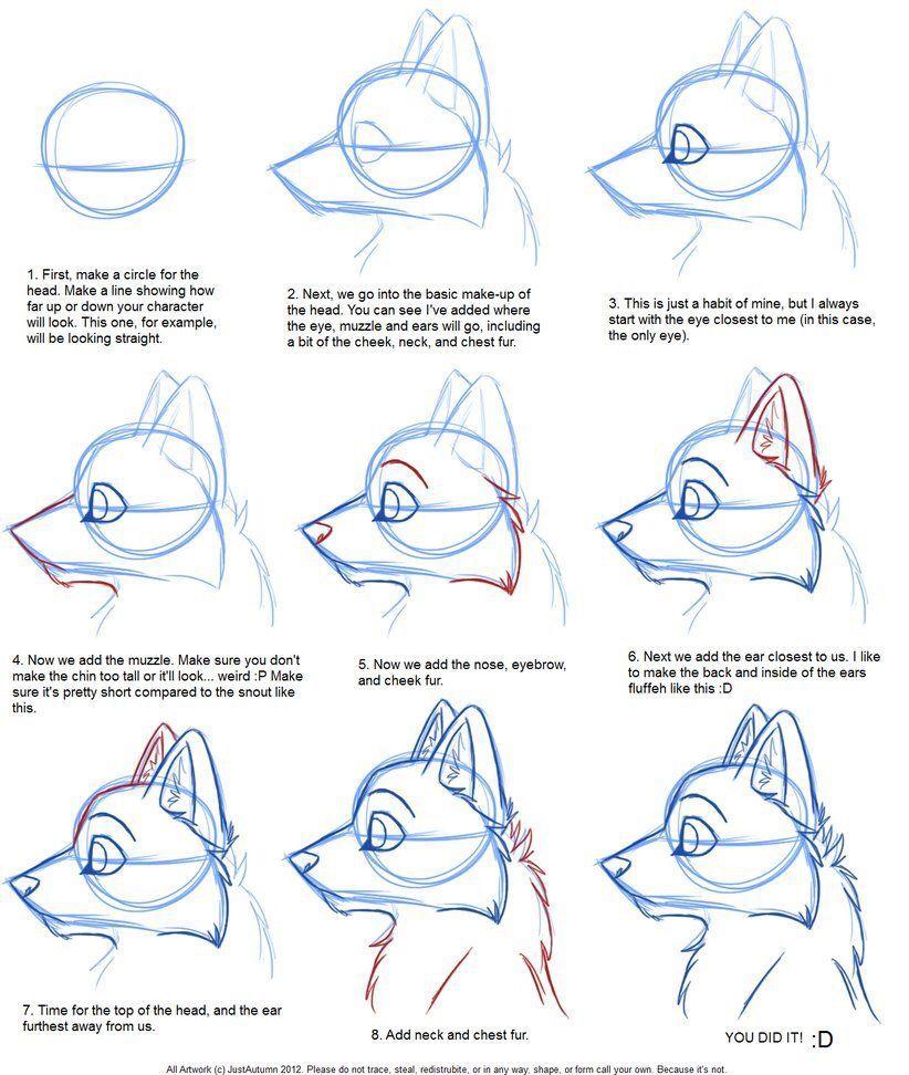 Drawing Canine Profile Furry Drawing Animal Drawings Drawings