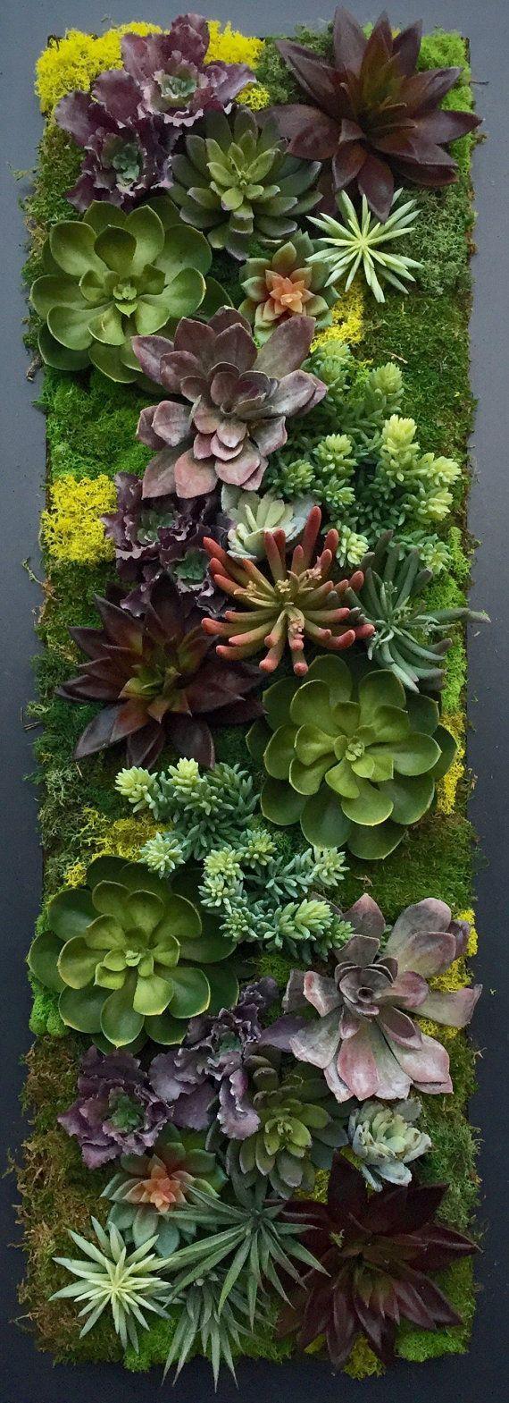 Custom made succulent wall art living room decor ideas pinterest