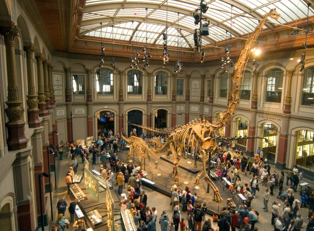 Pinkbigmac Museum Fur Naturkunde Naturkundemuseum Museum Natural History Berlin