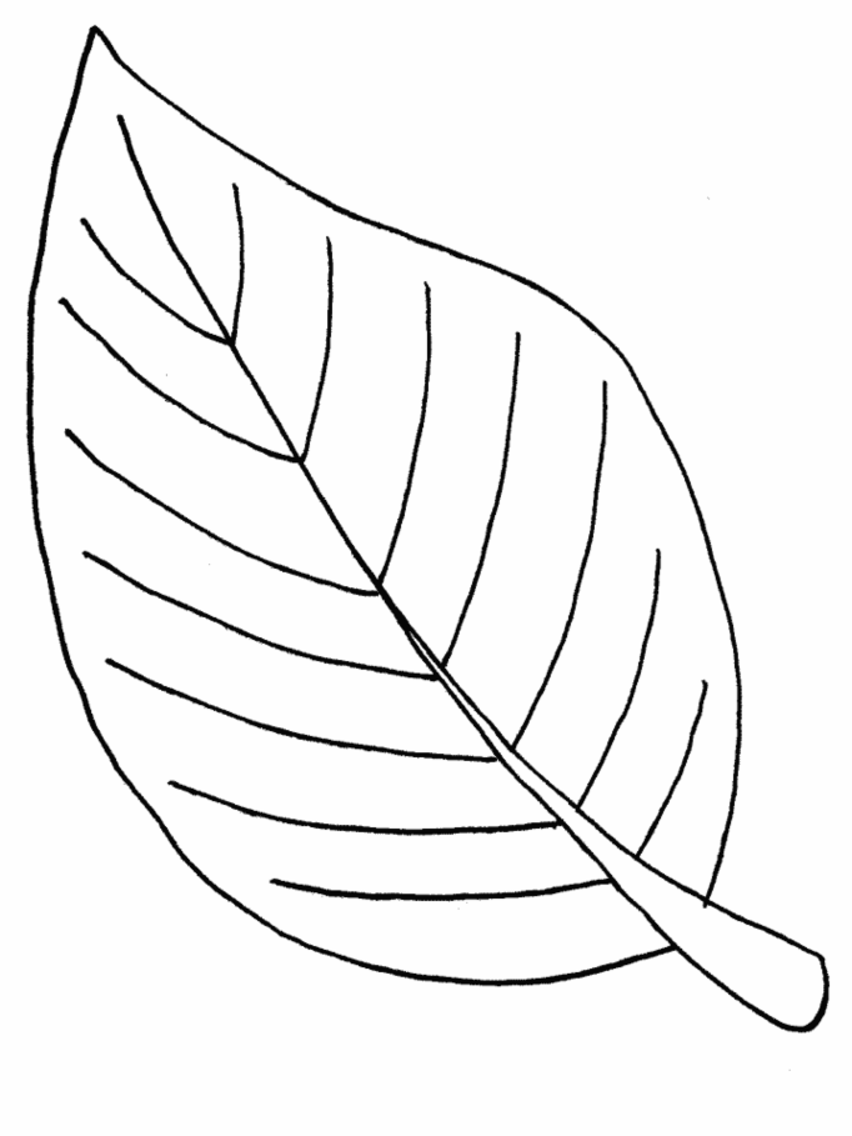 large coloring pages of leaves - photo#31