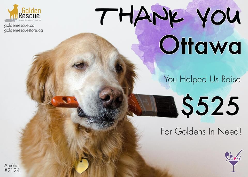 A Huge Thank You To Ottawa Ontario And Paint Nite Ottawa For