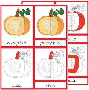 Pumpkin parts - - Yahoo Image Search Results