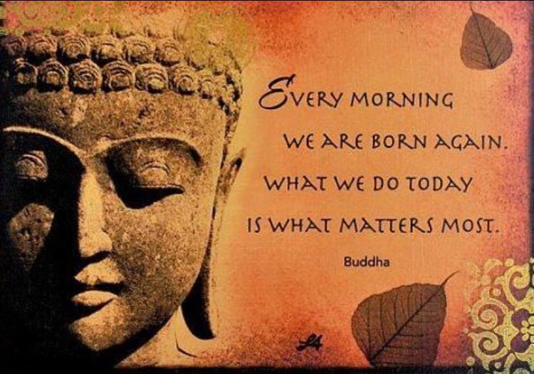 Image result for each day buddha