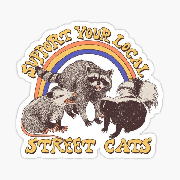 'Street Cats' Glossy Sticker by Hillary White