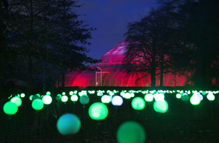 In Pictures Kew Gardens Is All Lit Up For Christmas Kew Gardens Kew Gardens Lights Kew