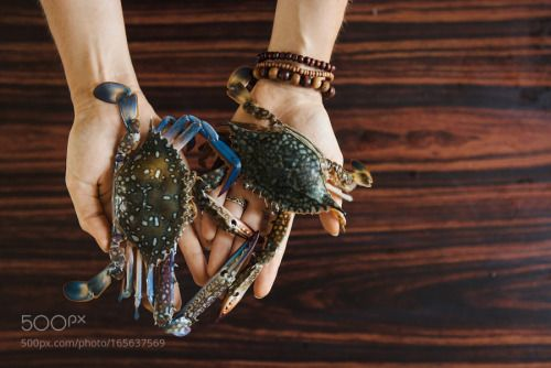 Hands holding fresh crabs on wooden table background top view by ninelutsk  IFTTT 500px