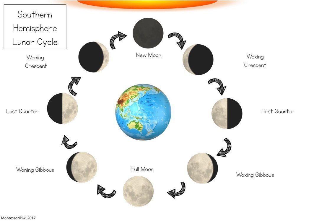 Tremendous Southern Hemisphere Lunar Cycle Diagram Surple Southern Wiring Digital Resources Instshebarightsorg