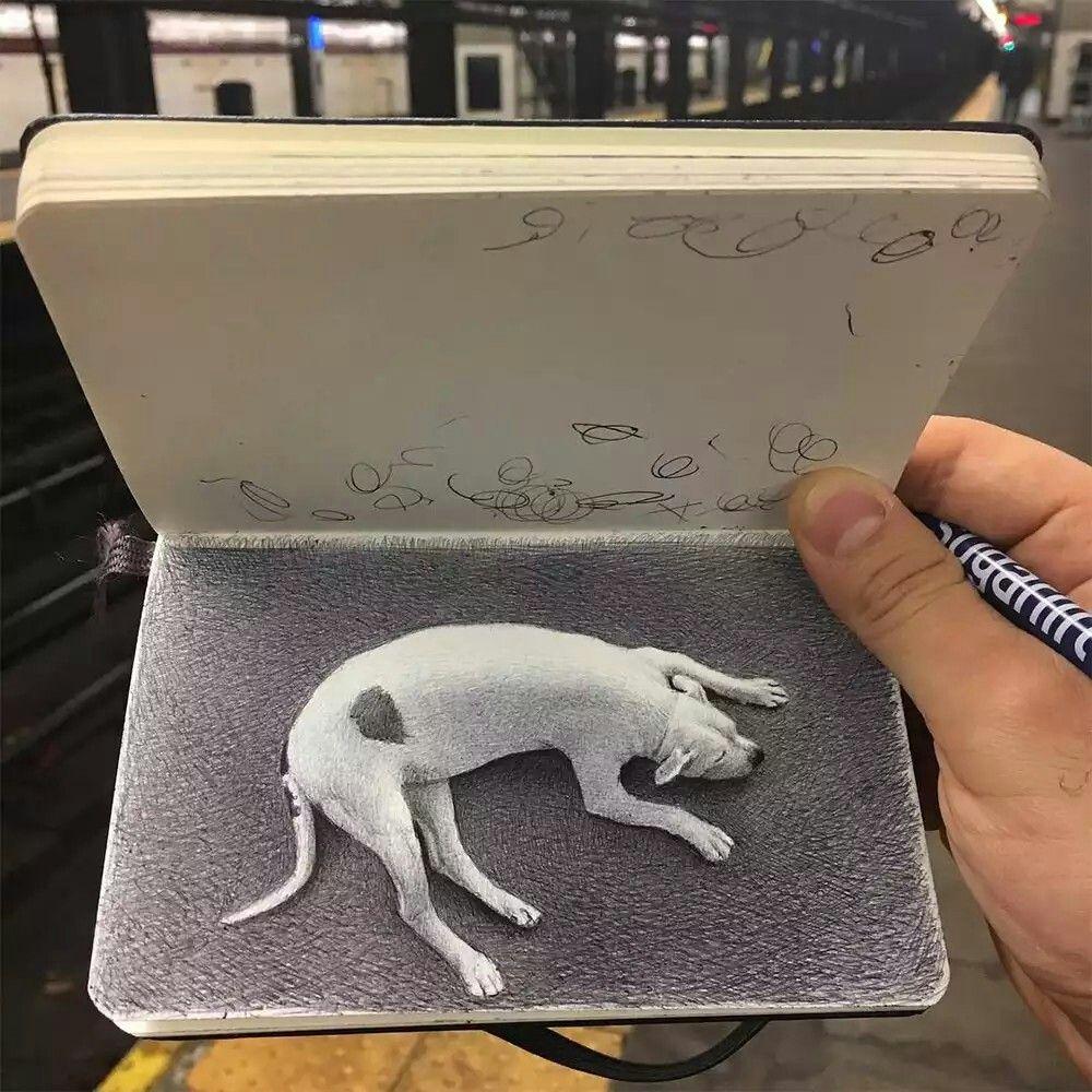 Pin By 加賀 昌子 On Art Ballpoint Pen Drawing Ballpoint Pen Art Pen Sketch