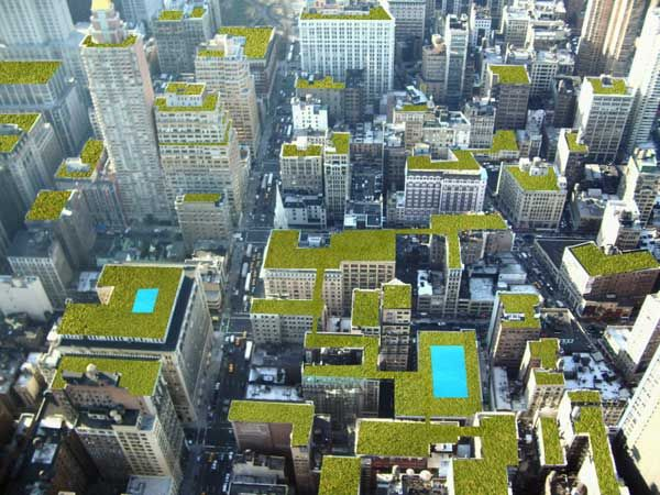 Green Roofs Can Make The World A Better Place. Take A Birds Eye View Of  What A Green Rooftop Looks Like. Also, See A Diagram Of How To Create Your  Own Green ... Part 95