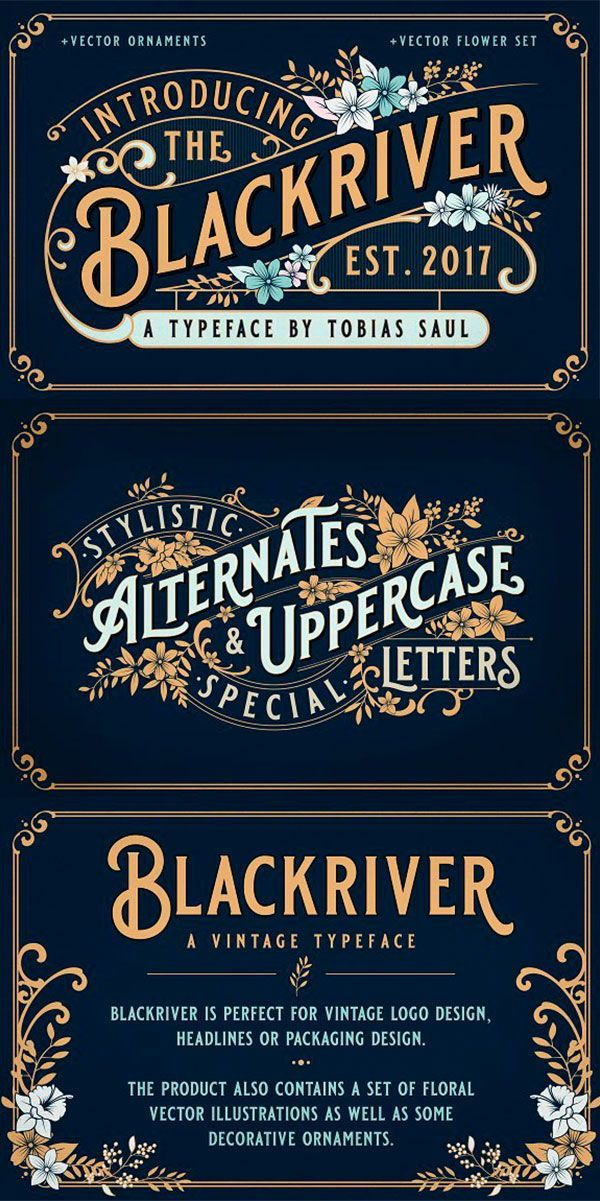 Blackriver font + ornaments is part of Vintage logo design, Retro logo design, Vintage graphic design, Vintage logo, Flower logo design, Logo design - 8V9P1M Cheers, Tobias