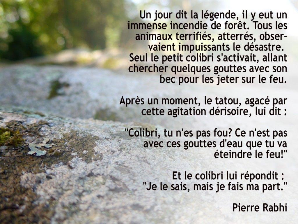 Le Colibri Pierre Rabhi Citations Pierre Rahbi