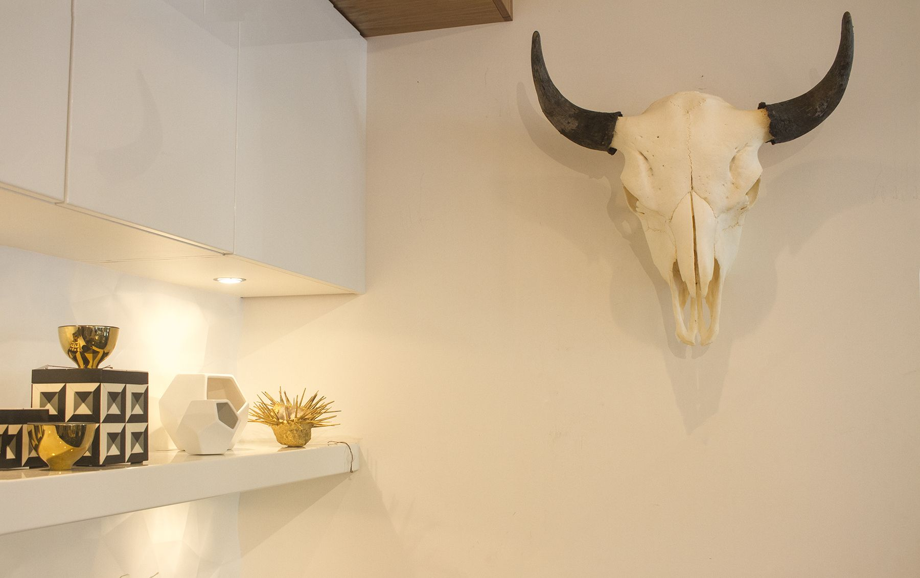 Bison Skull | Eclectic wall decor