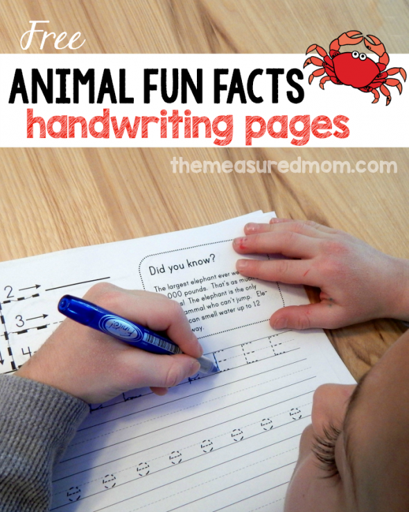 animal fun facts free handwriting worksheets best of the measured mom free handwriting. Black Bedroom Furniture Sets. Home Design Ideas