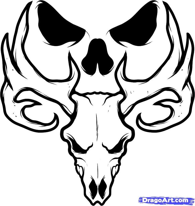 how to draw a deer skull deer skull tattoo step by step skulls