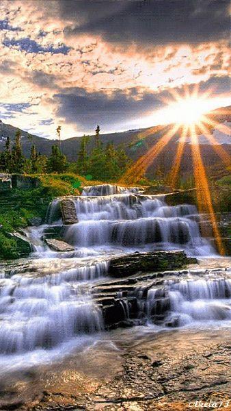 Nature – A collection of CLICK ON THE PICTURE (gif) AN WATCH IT COME TO LIFE. ...♡♥♡♥Love it