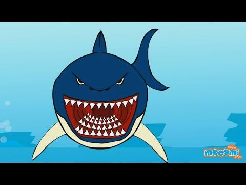 A 5 Min Video Learn About Sharks Sharks Sharks Facts Lesson For Kids Youtube Not On Earth For 4 Mill With Images Shark Activities Sharks For Kids Animal Study