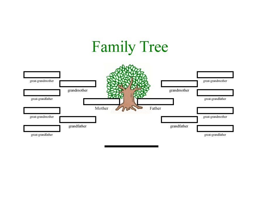family tree template 05 Family Pinterest Family trees - blank program template