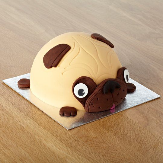 Tesco Mr Puggles Cake More