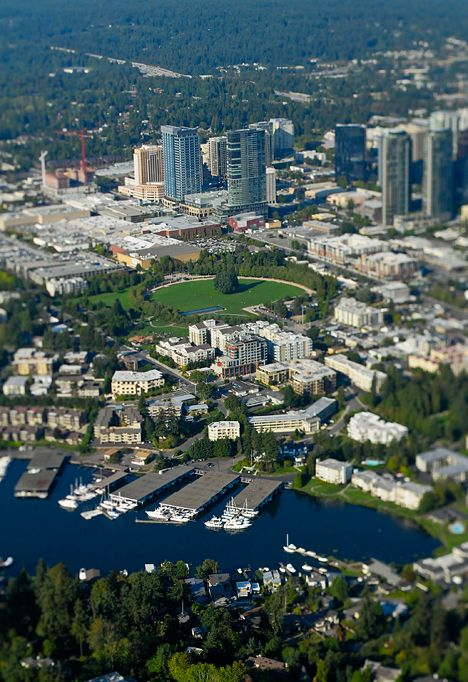 Things To Do In Bellevue Washington Things To Know Before You Get This