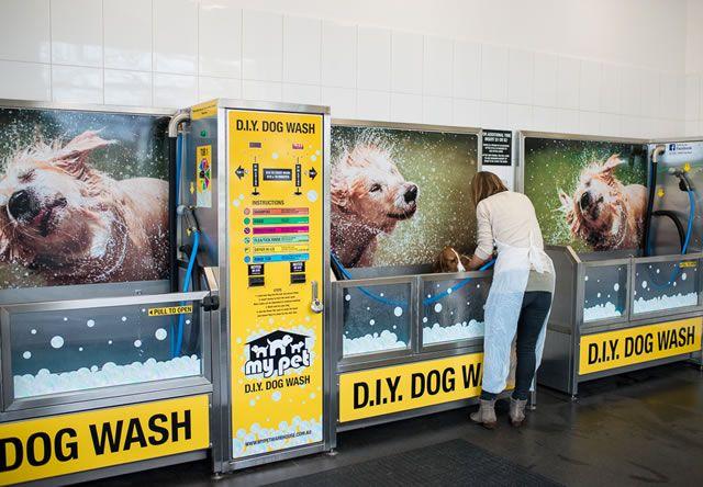 Diy Dog Wash And Dog Grooming Salon Malvern Victoria Diy Dog