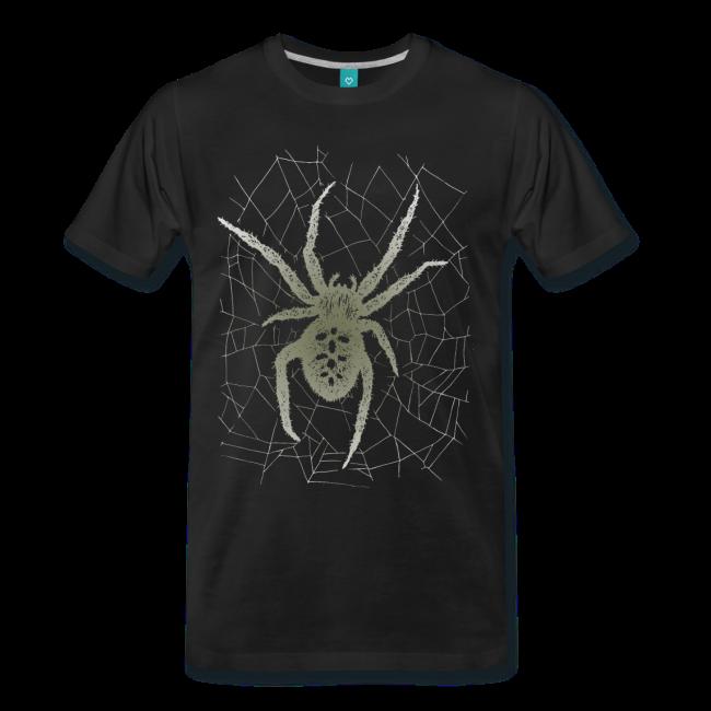 kreuzspinne spider spinne spiderweb spinnennetz mit