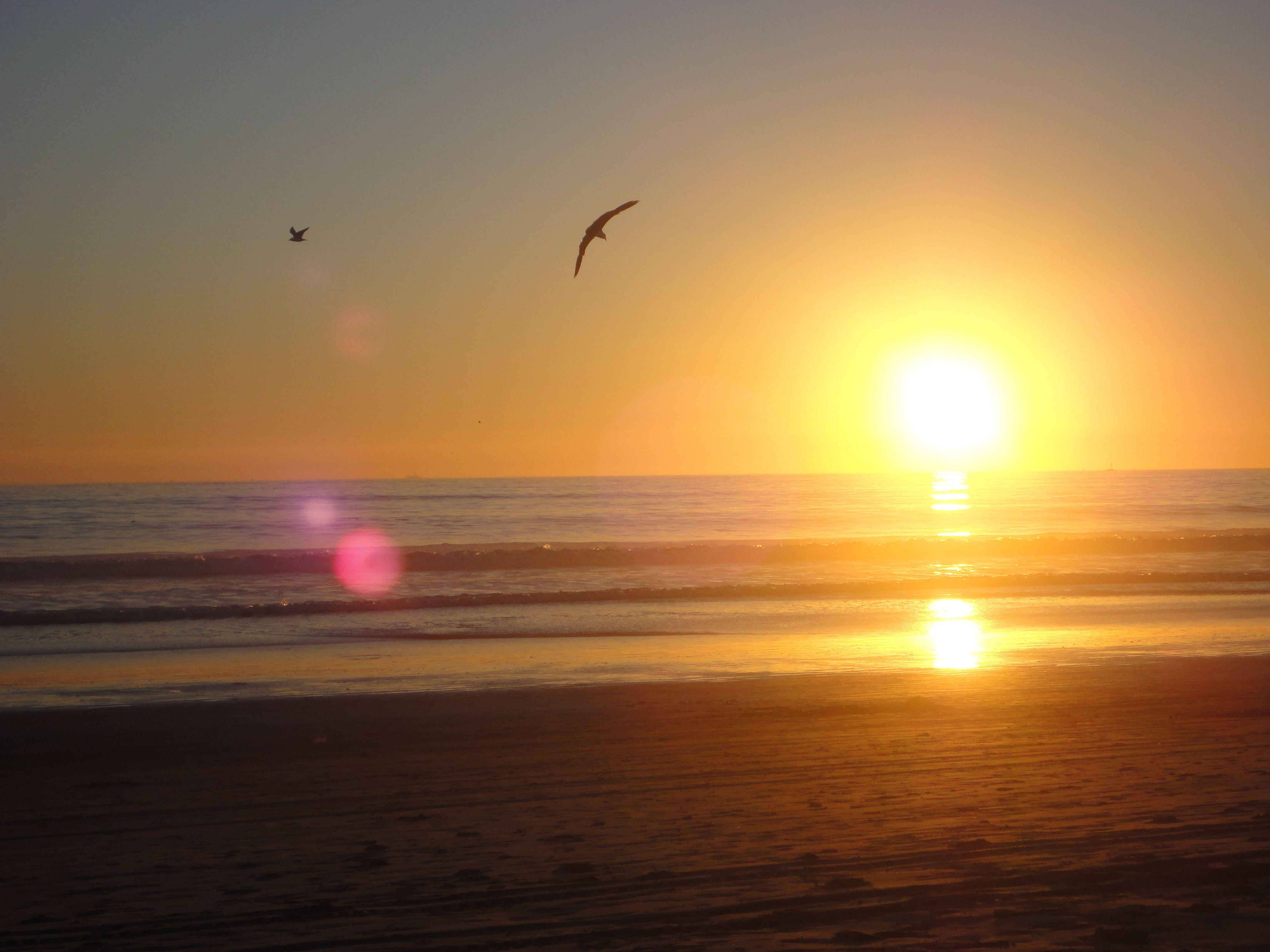 Beautiful Ocean Views peaceful sceneries | beautiful ocean views | pinterest | scenery