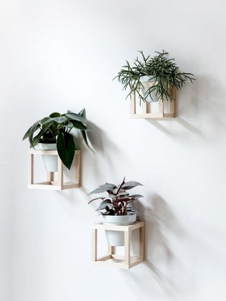 Cute Diy Home Decor Ideas Plants Design Decoraci 243 N De