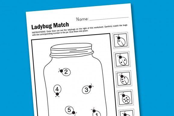 Ladybug Matching Kids Math Worksheet
