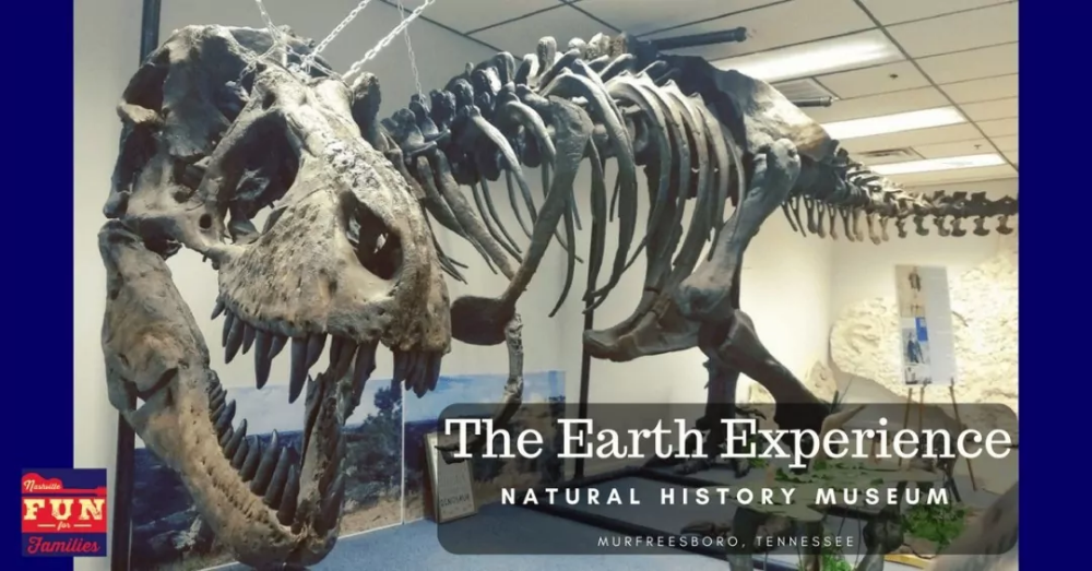 The Earth Experience - A Natural History Museum, See Dinosaurs in TN
