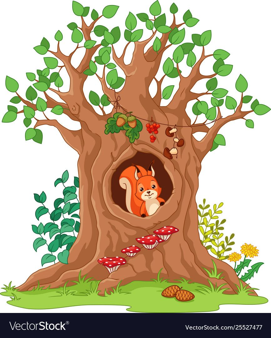 25+ Animals That Live In A Tree Clipart