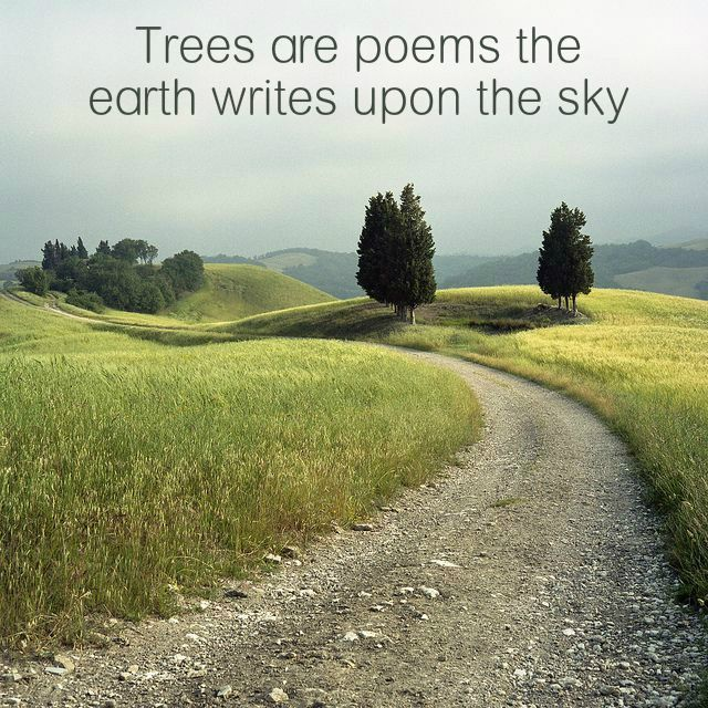 """""""Trees are poems the earth writes upon the sky, We fell them down and turn them into paper, That we may record our emptiness."""" ¯ Khalil Gibran"""
