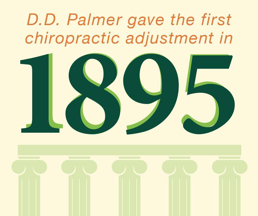 Chiropractic fact chiropractic chiropractic adjustment