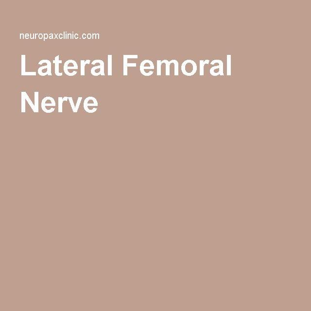 lateral femoral nerve | lateral femoral nerve pain | pinterest, Muscles