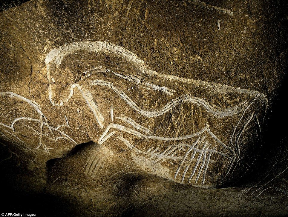 Man Made Cave Art : First art year old cave paintings mammoths bison