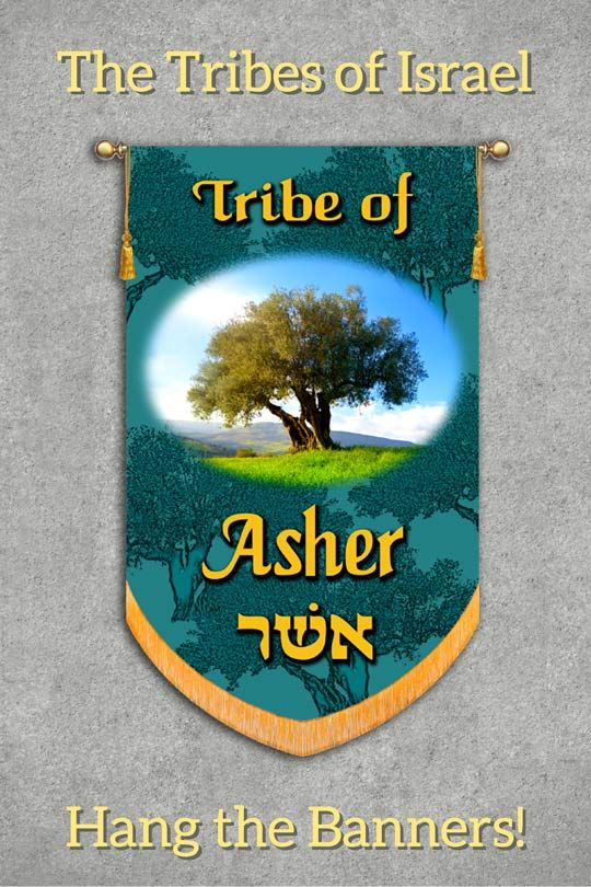 what hebrew tribe am i from