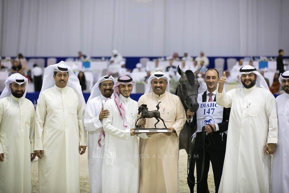 صور مقتطفة من اليوم الثاني من بطولة دبي ٢٠١٩ للجواد العربي Arabian Horse Coat Lab Coat
