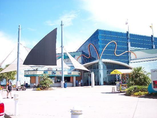 Myrtle Beach-Ripleys Aquarium | Myrtle beach vacation ...