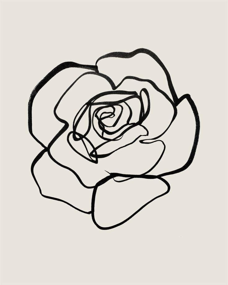 Continuous Line Rose Sumi Ink On Paper By Tristan B Line Art Drawings Line Art Flowers Flower Line Drawings