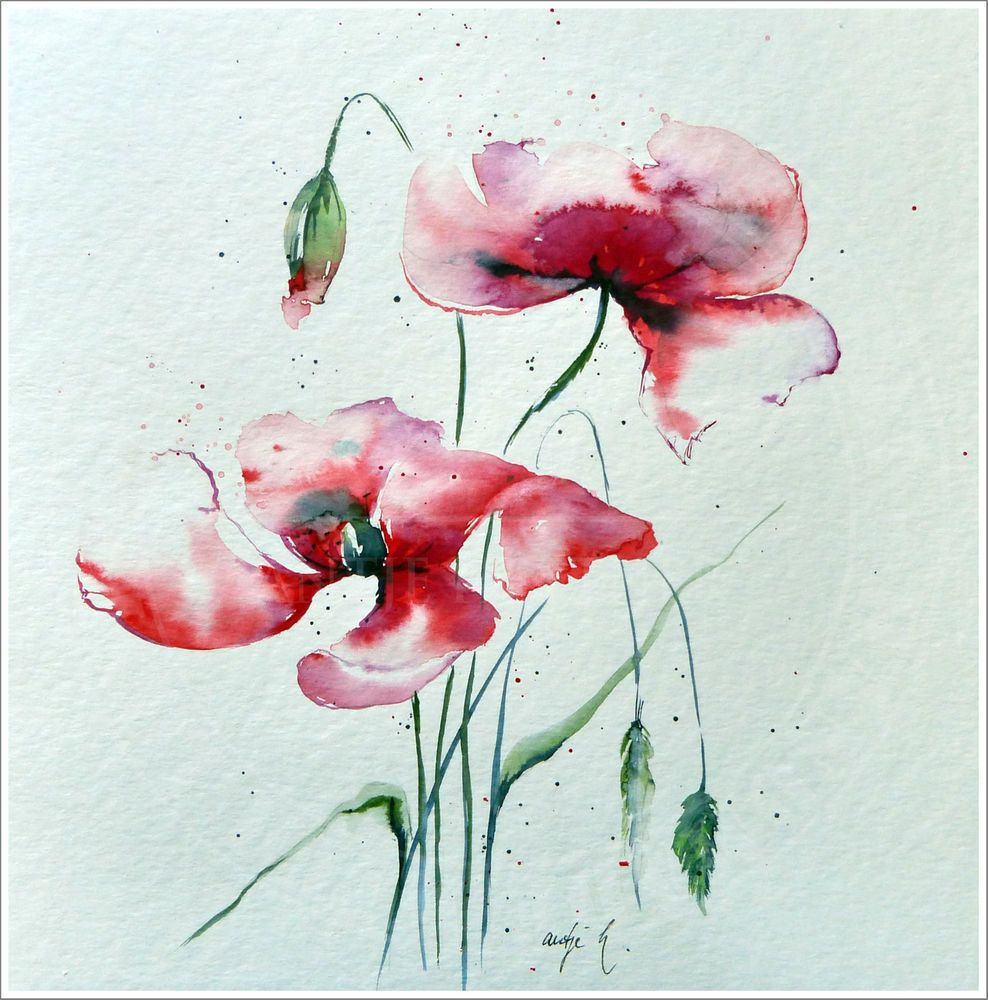 antje hettner bild original kunst aquarell 30x30 mohn blumen watercolor neu aquarell. Black Bedroom Furniture Sets. Home Design Ideas