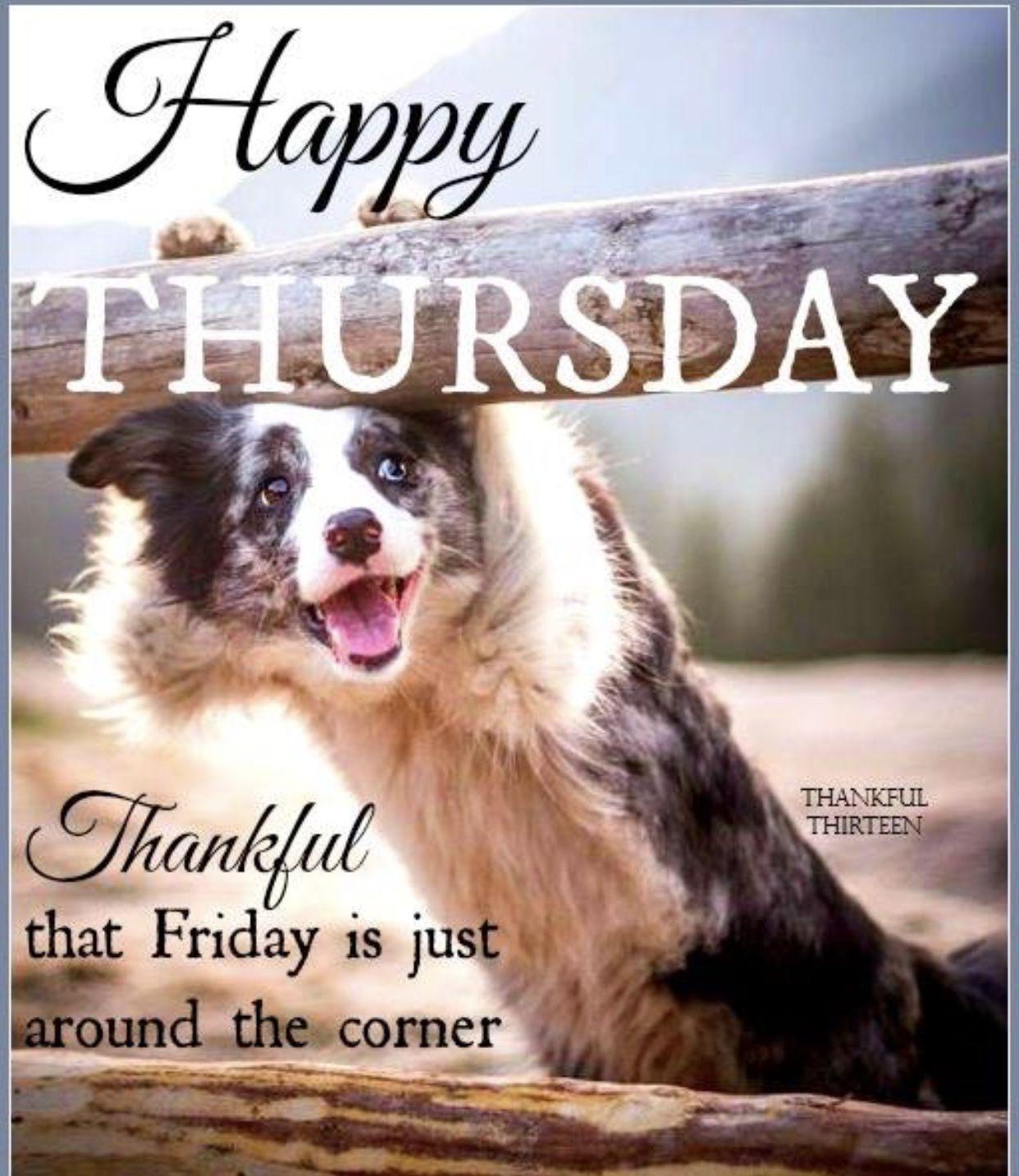 Funny Happy Thursday Memes