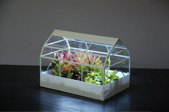 Mini Greenhouse With Led Grow Lights