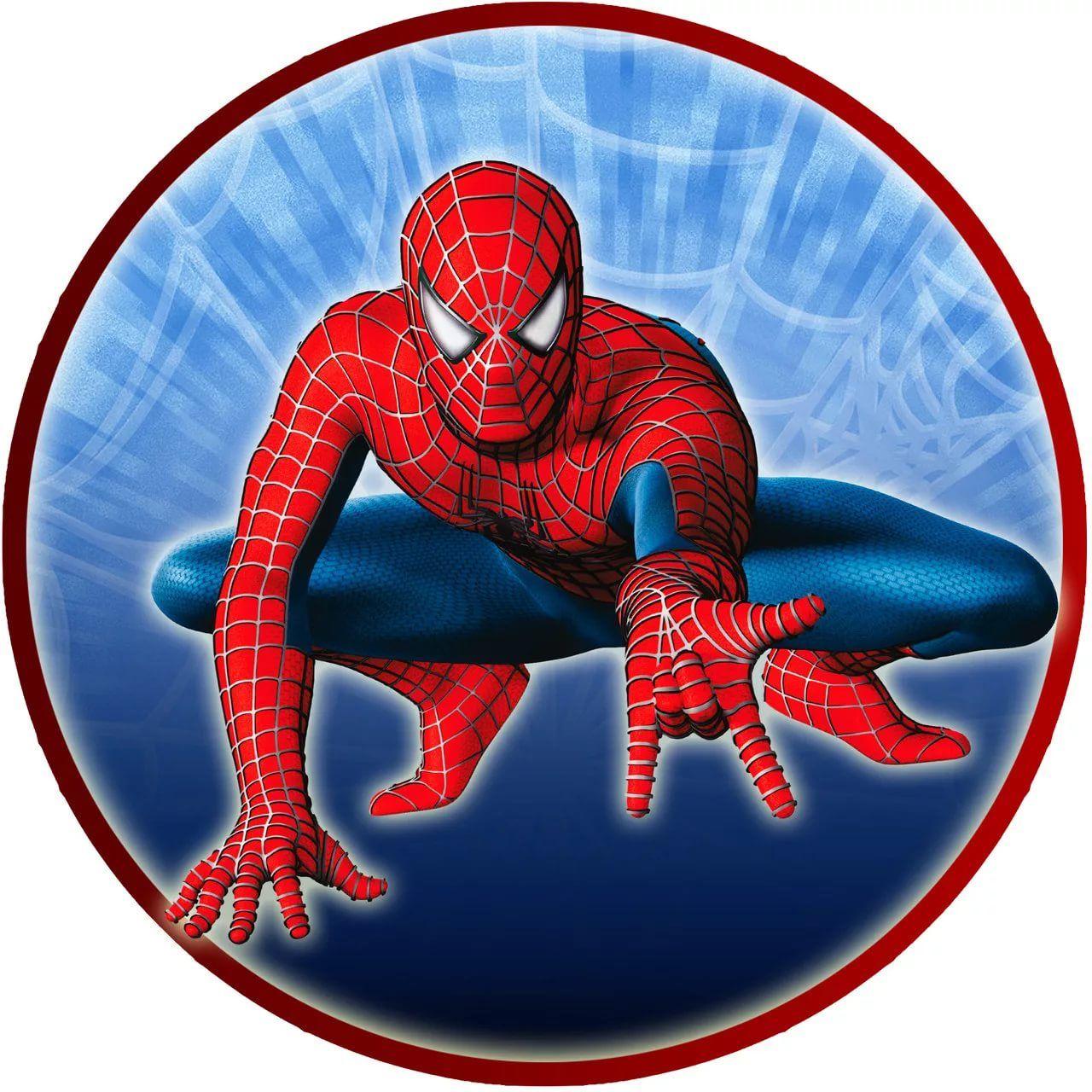 человек паук круглая картинка: 11 тыс изображений найдено ...