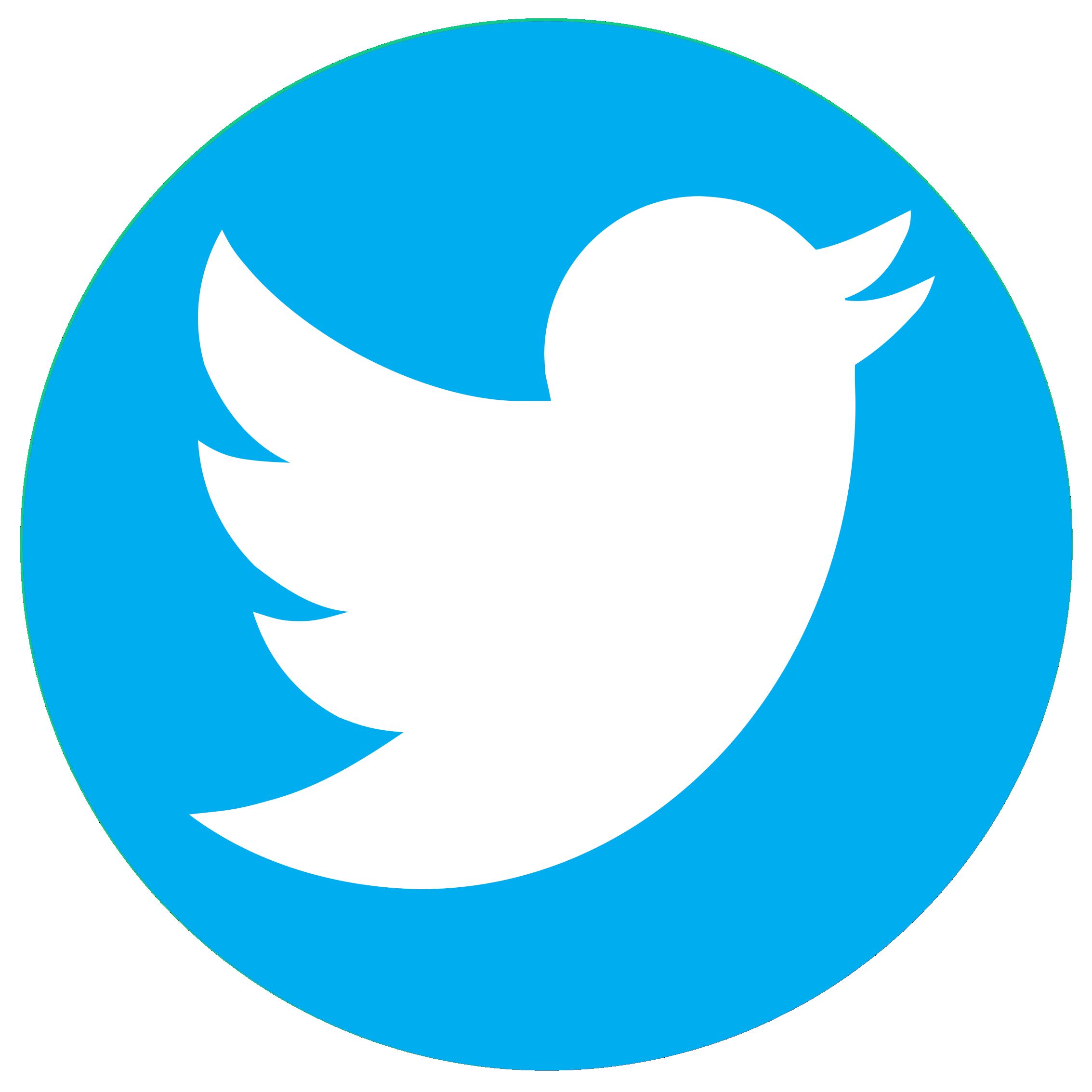 Image result for twitter logo Twitter logo, Twitter