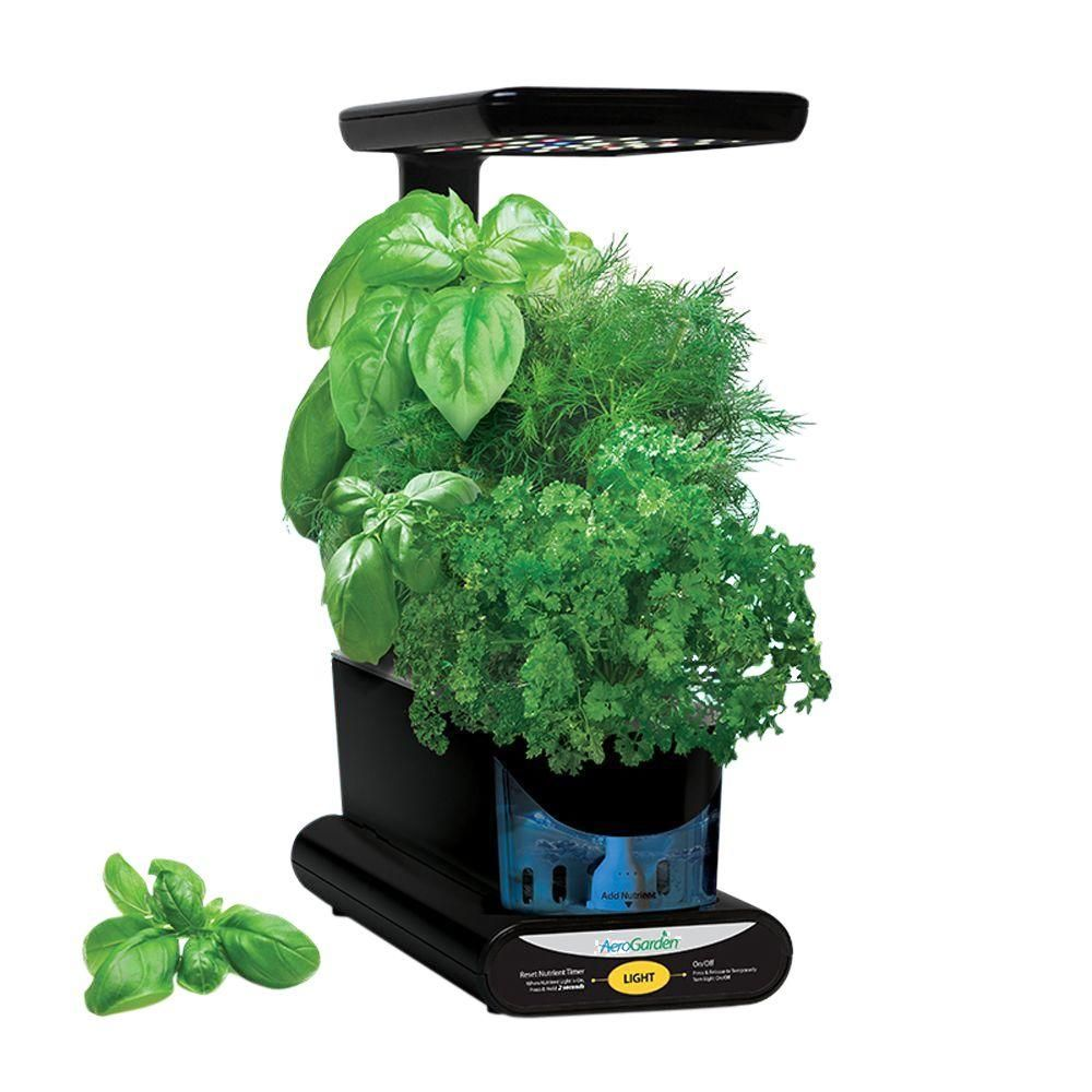 Aerogarden Sprout Led With Gourmet Herb Seed Pod Kit 400 x 300