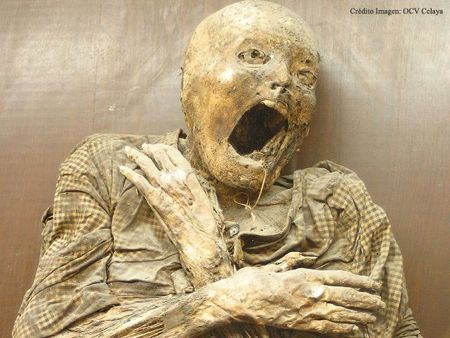 1000  images about Mummies on Pinterest