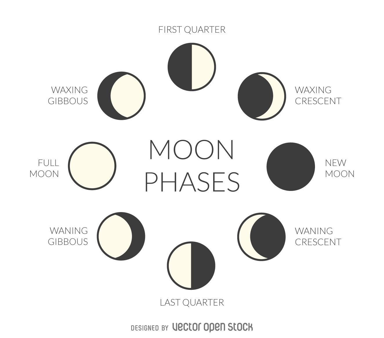 Illustration Featuring The Phases Of The Moon Design Includes Simple Moon Drawings Of Every