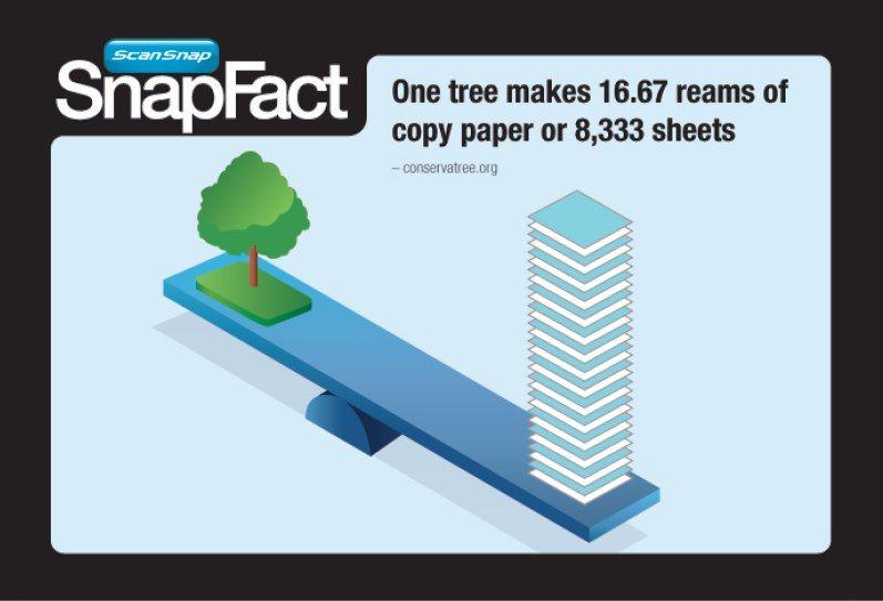 Snapfact Friday How Much Paper Does One Tree Produce Education Inspiration One Tree Paper