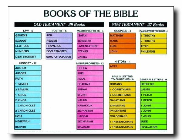 picture about Books of the Bible Chart Printable named Master the Guides of the Bible ~ Section A person - JoyfulTimesToday